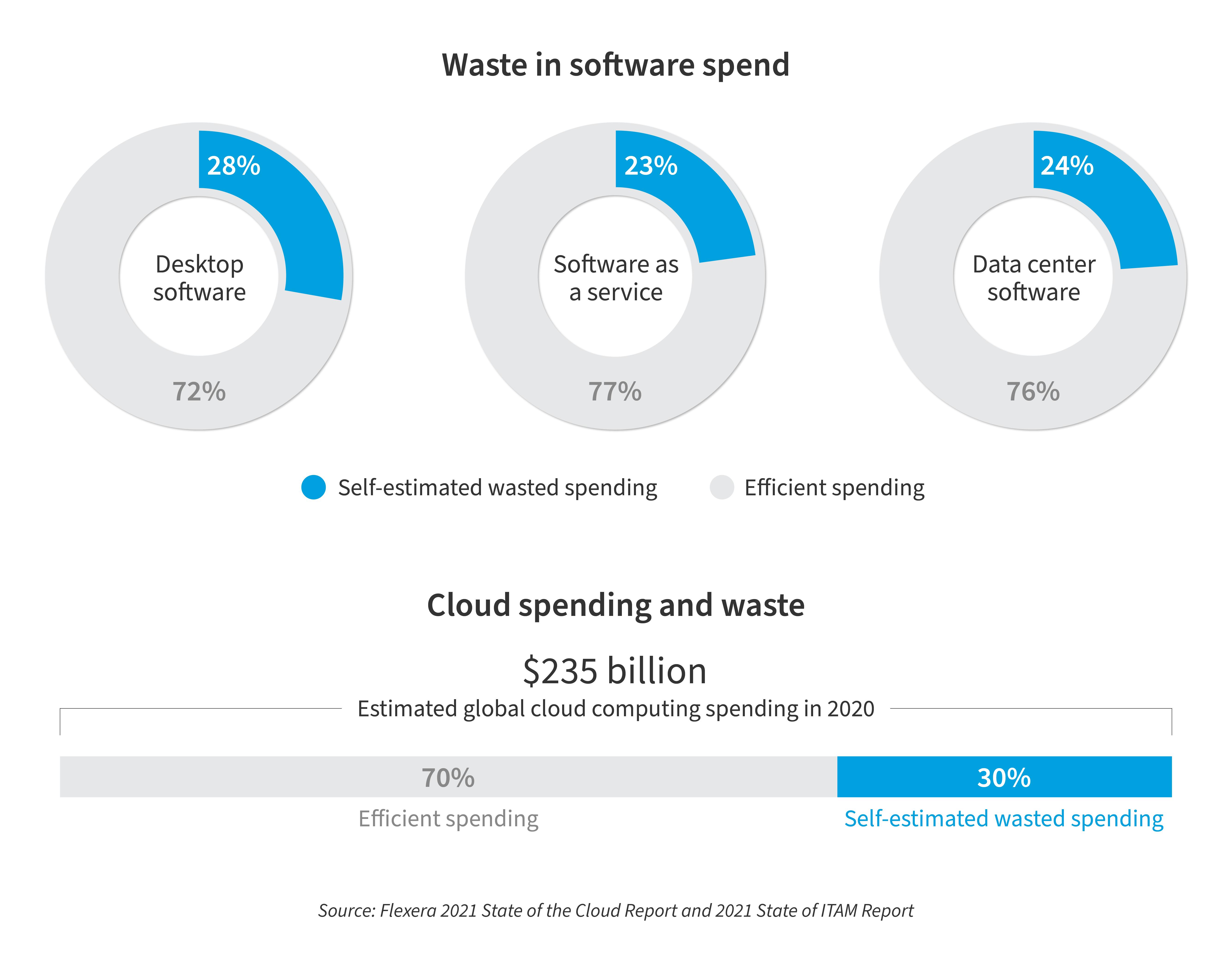 Waste in Software Spending