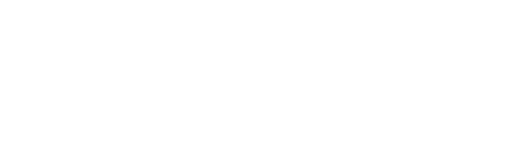 Ergreifen Sie das Ruder mit FlexNet Manager Suite