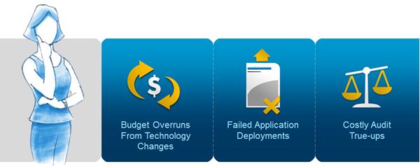 Flexera Software value to CFOs