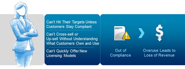 Flexera Software value to Sales