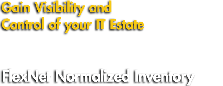 Gain Visibility and Control of your IT Estate