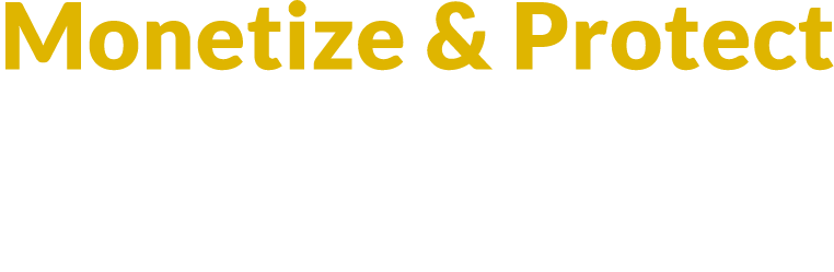Monetize and Protect your Internet of Things IP