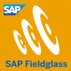 SAP Fieldglass Integration